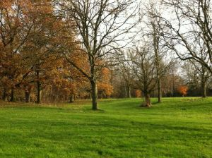Autumn in Bruntwood Park, Source: