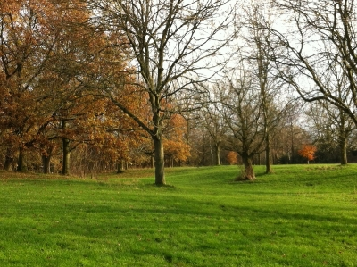 Autumn in Bruntwood Park
